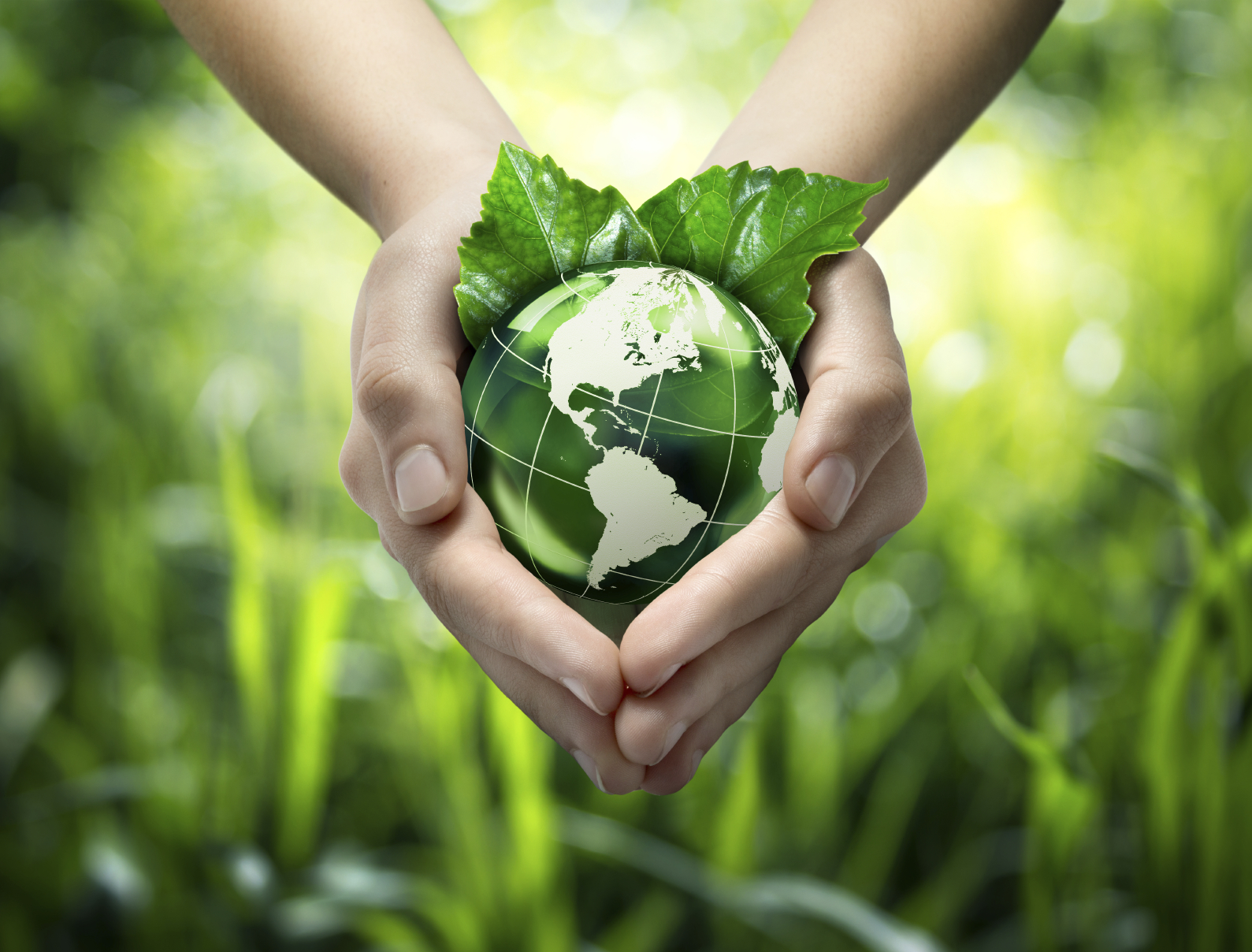How the Internet of Things  Can Improve Environmental Sustainability